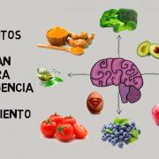 ¿Cuáles son los alimentos que ayudan al cerebro?